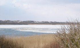 Zugefrorener Hammersee auf der Insel Juist im Winter